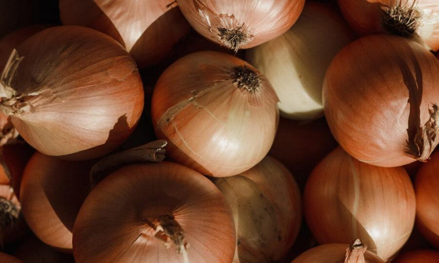 Houbové choroby česneku a cibulovin