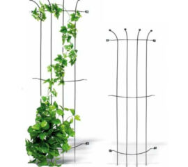 Popínavé rostliny si žádají opory, loubí a altány