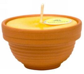 Citronela v keramické misce