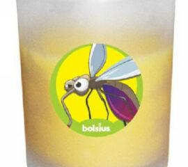 Citronela ve skle